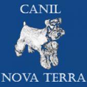 Canil Nova Terra - Schnauzer & Yorkshire
